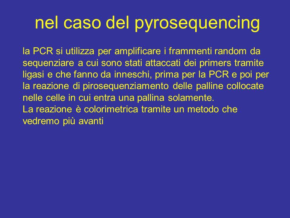 la PCR si utilizza per amplificare i frammenti random da sequenziare a cui sono stati attaccati dei primers tramite ligasi e che fanno da inneschi, pr