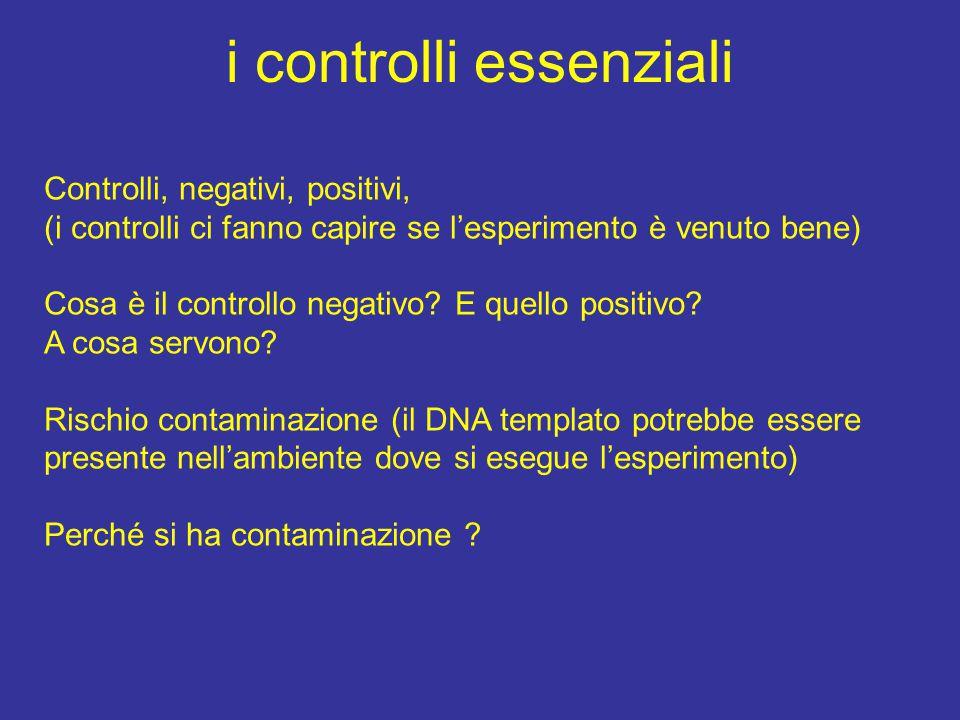 i controlli essenziali Controlli, negativi, positivi, (i controlli ci fanno capire se l'esperimento è venuto bene) Cosa è il controllo negativo? E que