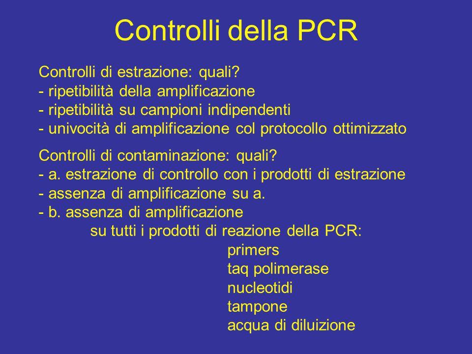Controlli della PCR Controlli di estrazione: quali? - ripetibilità della amplificazione - ripetibilità su campioni indipendenti - univocità di amplifi