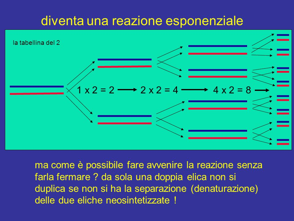 diventa una reazione esponenziale 2 x 2 = 44 x 2 = 81 x 2 = 2 ma come è possibile fare avvenire la reazione senza farla fermare ? da sola una doppia e