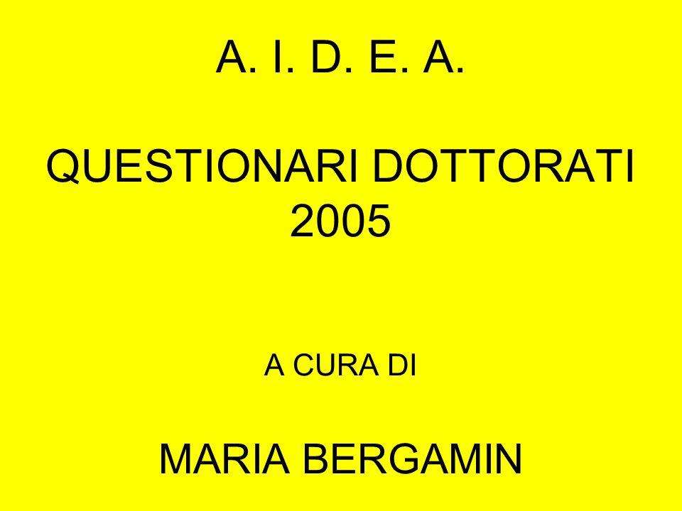 A. I. D. E. A. QUESTIONARI DOTTORATI 2005 A CURA DI MARIA BERGAMIN