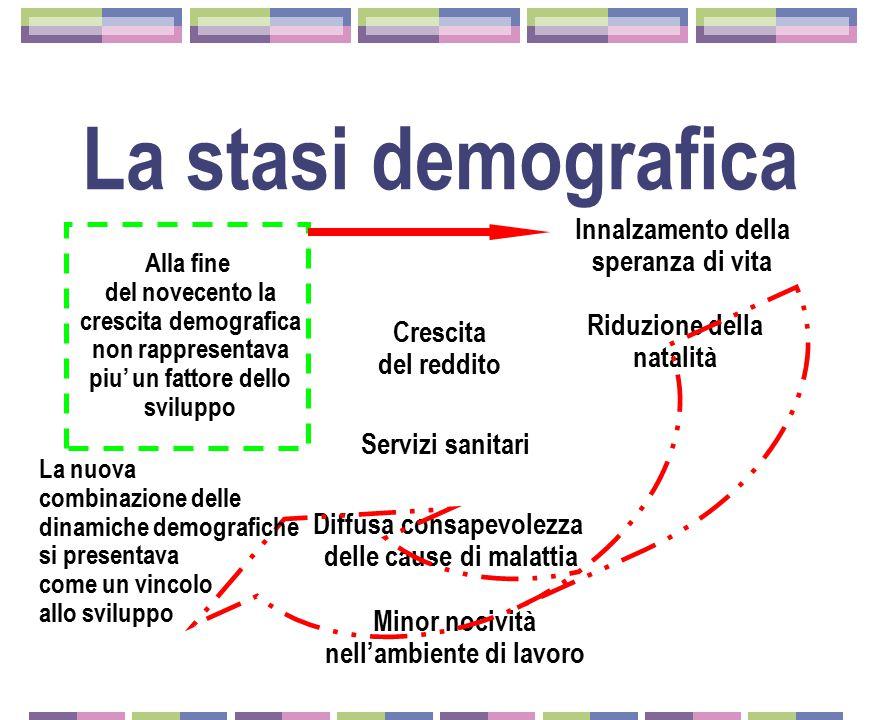 La fine del precedente paradigma  La fine del miracolo  La comparsa del Giappone  La crisi petrolifera e l'inflazione  Il conflitto sociale  In Italia cresce il reddito e i consumi