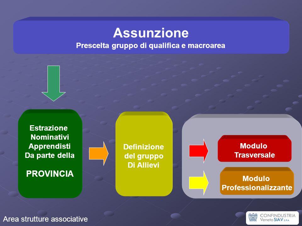 Assunzione Prescelta gruppo di qualifica e macroarea Estrazione Nominativi Apprendisti Da parte della PROVINCIA Modulo Professionalizzante Modulo Tras