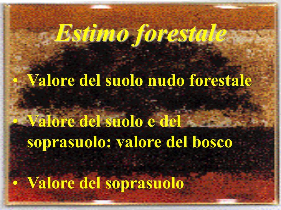Estimo forestale Valore del suolo nudo forestale Valore del suolo e del soprasuolo: valore del bosco Valore del soprasuolo