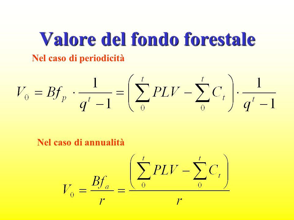 Il valore del bosco suolo più soprasuolo Il valore del bosco suolo più soprasuolo (Bn) Ciclo o turno fittizio