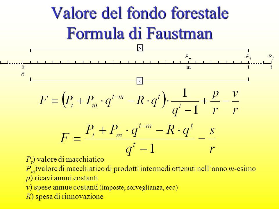 Valore del fondo forestale Formula di Faustman P t ) valore di macchiatico P m )valore di macchiatico di prodotti intermedi ottenuti nell'anno m-esimo