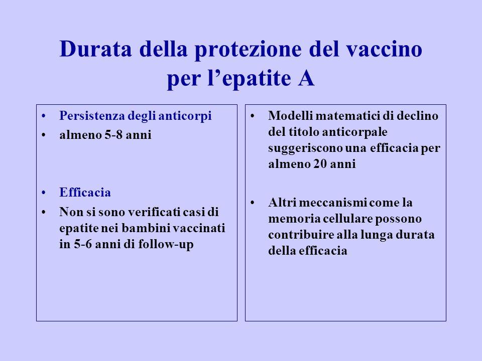 Persistenza degli anticorpi almeno 5-8 anni Efficacia Non si sono verificati casi di epatite nei bambini vaccinati in 5-6 anni di follow-up Modelli matematici di declino del titolo anticorpale suggeriscono una efficacia per almeno 20 anni Altri meccanismi come la memoria cellulare possono contribuire alla lunga durata della efficacia Durata della protezione del vaccino per l'epatite A