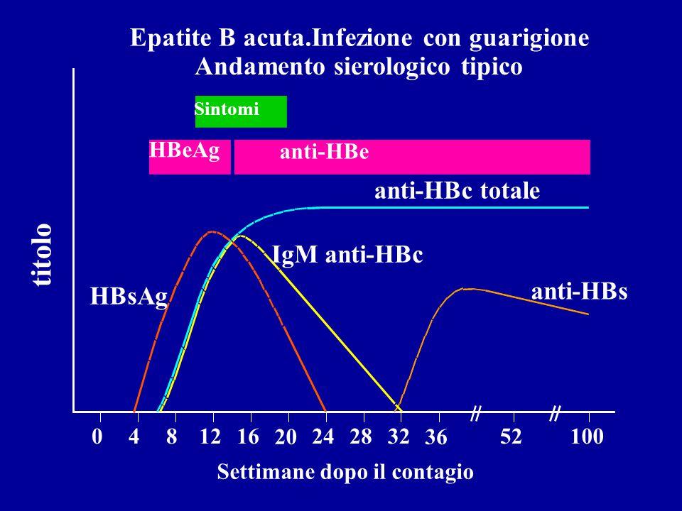 Epatite B acuta.Infezione con guarigione Andamento sierologico tipico