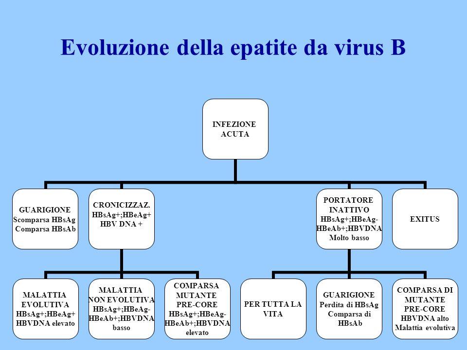 Evoluzione della epatite da virus B INFEZIONE ACUTA GUARIGIONE Scomparsa HBsAg Comparsa HBsAb CRONICIZZAZ. HBsAg+;HBeAg+ HBV DNA + MALATTIA EVOLUTIVA