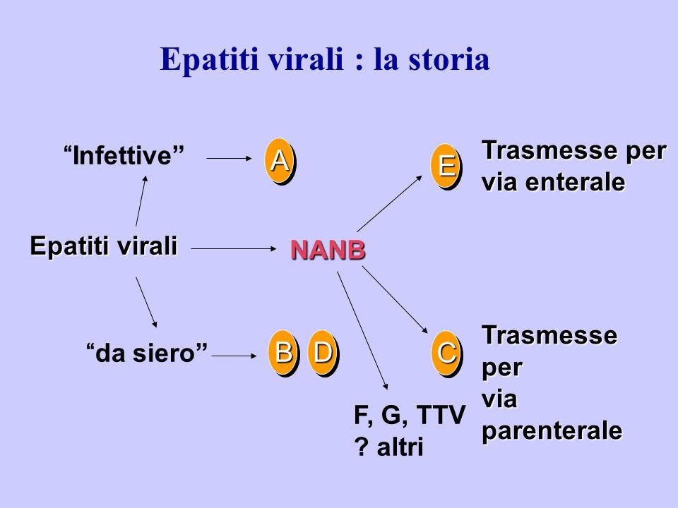 "A ""Infettive"" ""da siero"" Epatiti virali Trasmesse per via enterale Trasmesse per via parenterale F, G, TTV ? altri E NANB BD C Epatiti virali : la sto"