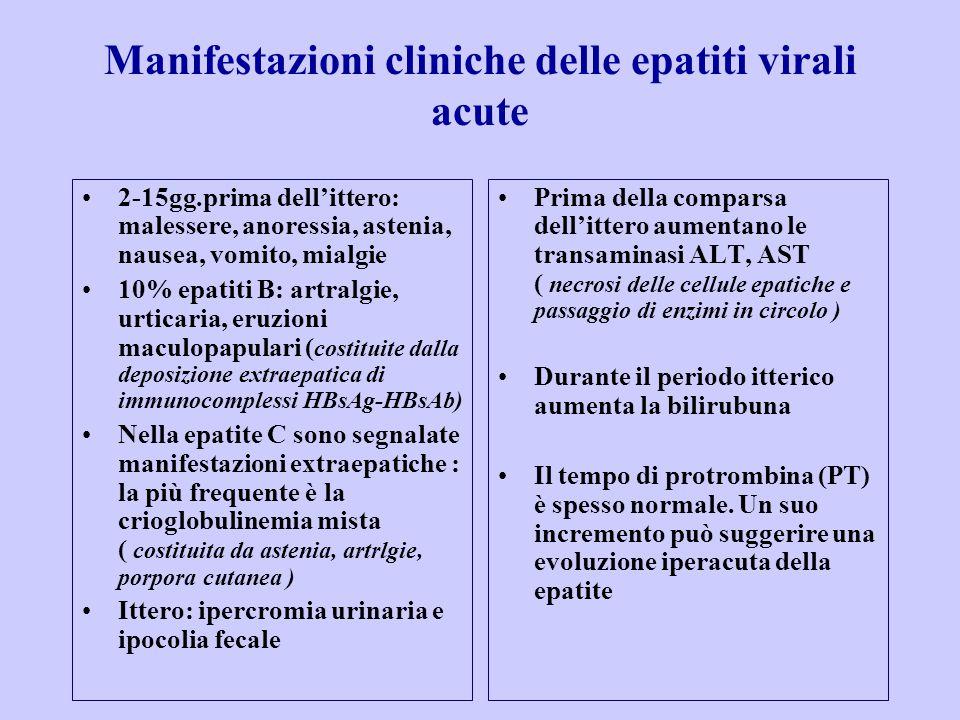 Manifestazioni cliniche delle epatiti virali acute 2-15gg.prima dell'ittero: malessere, anoressia, astenia, nausea, vomito, mialgie 10% epatiti B: artralgie, urticaria, eruzioni maculopapulari ( costituite dalla deposizione extraepatica di immunocomplessi HBsAg-HBsAb) Nella epatite C sono segnalate manifestazioni extraepatiche : la più frequente è la crioglobulinemia mista ( costituita da astenia, artrlgie, porpora cutanea ) Ittero: ipercromia urinaria e ipocolia fecale Prima della comparsa dell'ittero aumentano le transaminasi ALT, AST ( necrosi delle cellule epatiche e passaggio di enzimi in circolo ) Durante il periodo itterico aumenta la bilirubuna Il tempo di protrombina (PT) è spesso normale.
