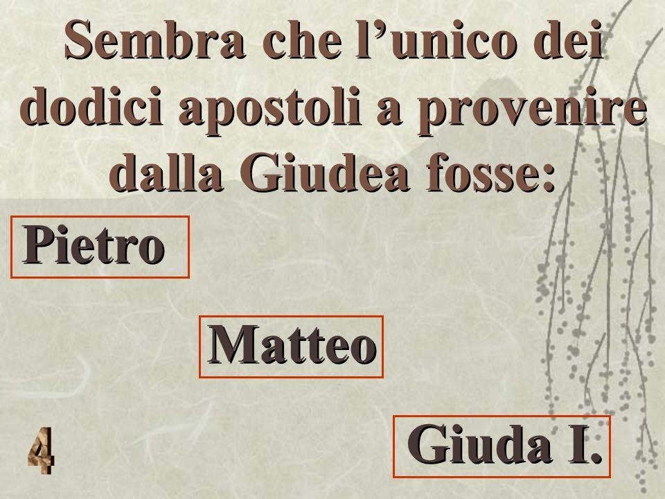 Sembra che l'unico dei dodici apostoli a provenire dalla Giudea fosse: Pietro Matteo Giuda I.