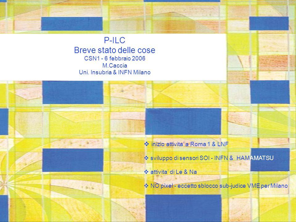 P-ILC Breve stato delle cose CSN1 - 6 febbraio 2006 M.Caccia Uni.