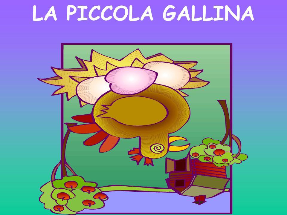 LA PICCOLA GALLINA