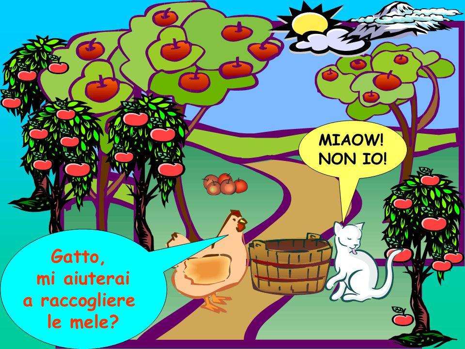 MIAOW! NON IO! Gatto, mi aiuterai a raccogliere le mele?