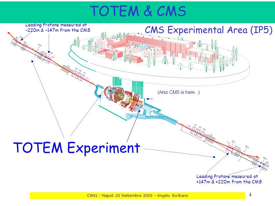 35 Total Cross Section, Elastic Scattering and Diffraction Dissociation at the LHC CSN1 - Napoli 23 Settembre 2005 - Angelo Scribano Bari - ricercatori Ricercatori equivalenti: 2.8 70INFNE.Radicioni4 70INFN M.G.