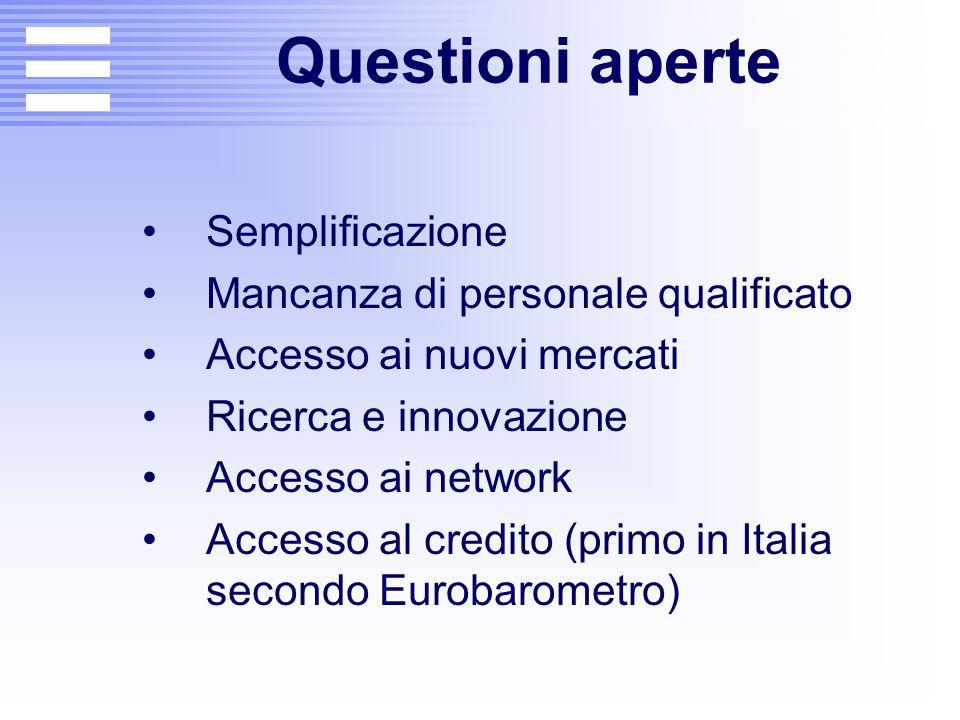 Questioni aperte Semplificazione Mancanza di personale qualificato Accesso ai nuovi mercati Ricerca e innovazione Accesso ai network Accesso al credit