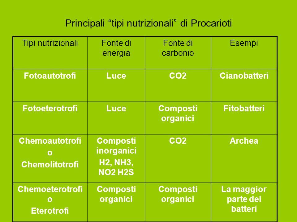 "Principali ""tipi nutrizionali"" di Procarioti Tipi nutrizionaliFonte di energia Fonte di carbonio Esempi FotoautotrofiLuceCO2Cianobatteri Fotoeterotrof"