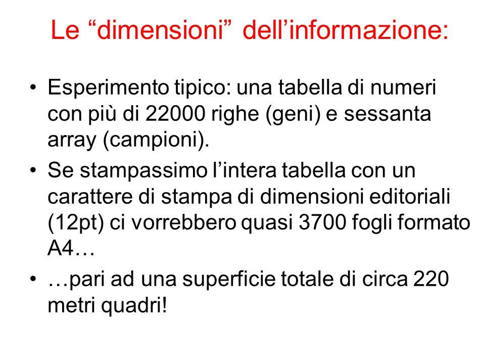 """Le """"dimensioni"""" dell'informazione: Esperimento tipico: una tabella di numeri con più di 22000 righe (geni) e sessanta array (campioni). Se stampassimo"""