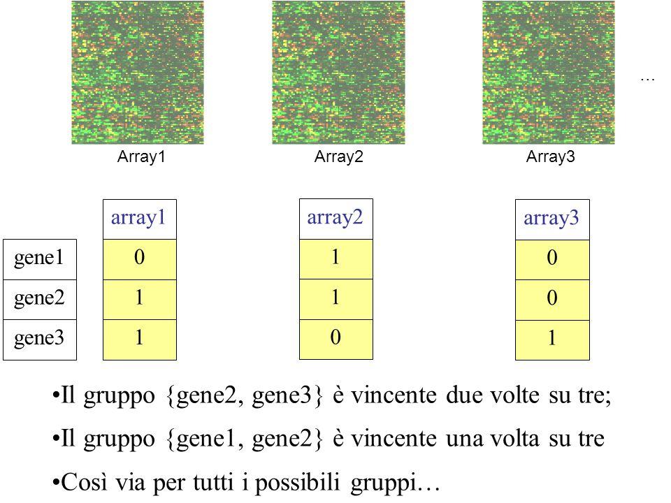 Il gruppo {gene2, gene3} è vincente due volte su tre; Il gruppo {gene1, gene2} è vincente una volta su tre Così via per tutti i possibili gruppi… Arra