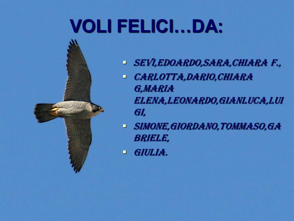VOLI FELICI…DA: SSSSEVI,EDOARDO,SARA,CHIARA F., CCCCARLOTTA,DARIO,CHIARA G,MARIA ELENA,LEONARDO,GIANLUCA,LUI GI, SSSSIMONE,GIORDANO,TOMMAS