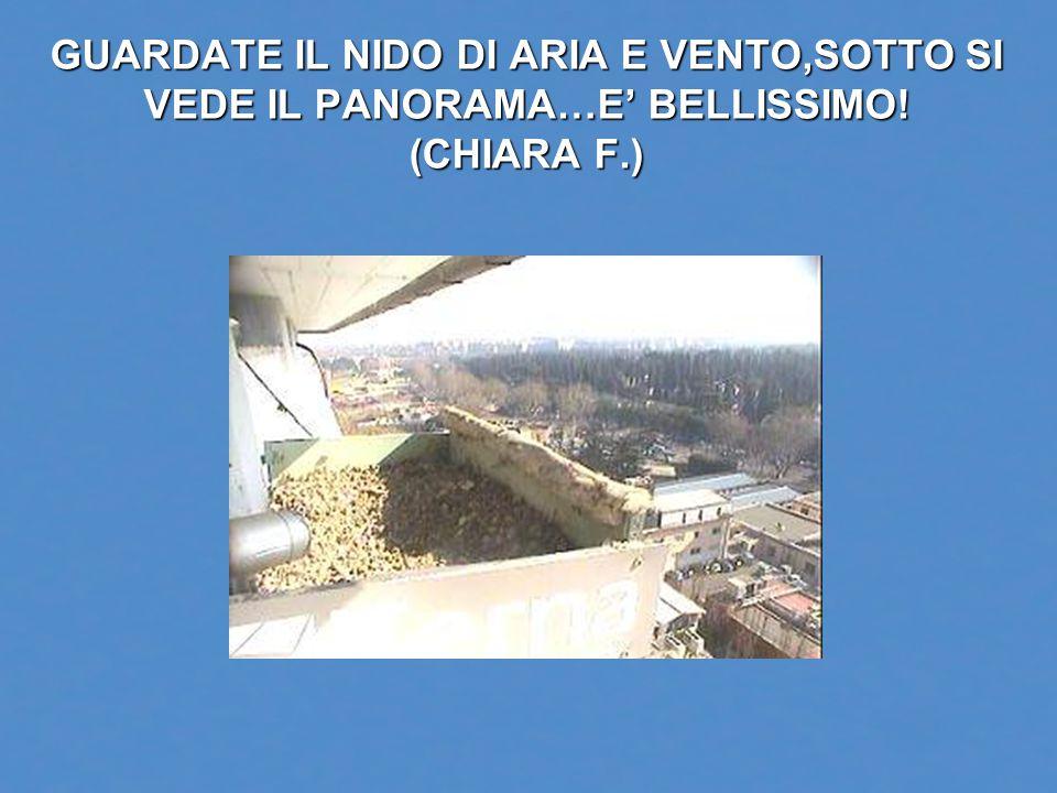 GUARDATE IL NIDO DI ARIA E VENTO,SOTTO SI VEDE IL PANORAMA…E' BELLISSIMO! (CHIARA F.)
