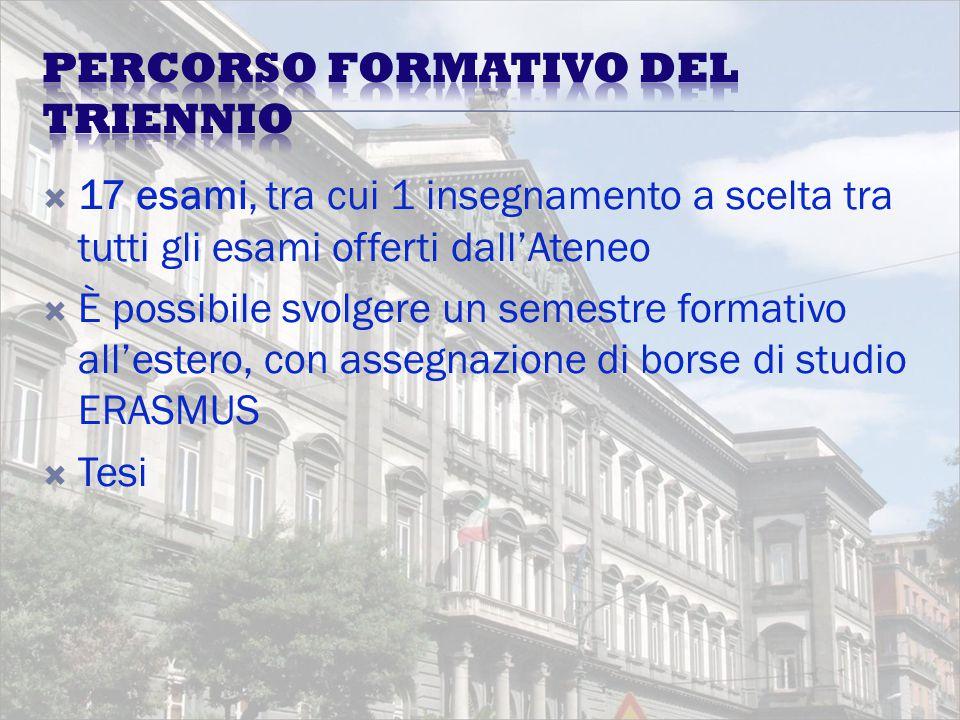 17 esami, tra cui 1 insegnamento a scelta tra tutti gli esami offerti dall'Ateneo  È possibile svolgere un semestre formativo all'estero, con assegnazione di borse di studio ERASMUS  Tesi