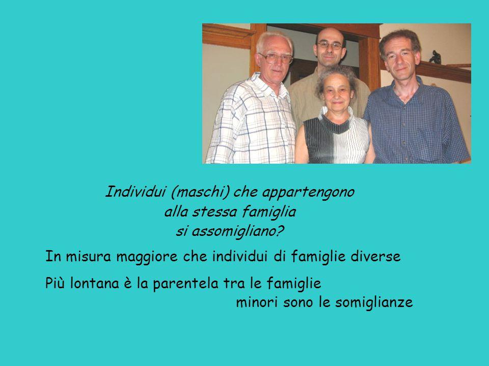 Individui (maschi) che appartengono alla stessa famiglia si assomigliano? In misura maggiore che individui di famiglie diverse Più lontana è la parent