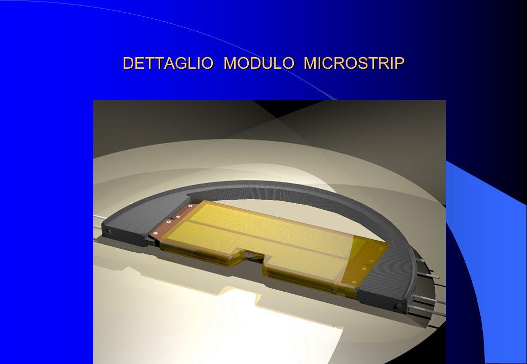 DETTAGLIO MODULO MICROSTRIP