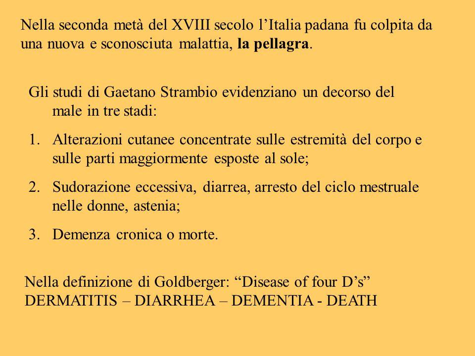 Nella seconda metà del XVIII secolo l'Italia padana fu colpita da una nuova e sconosciuta malattia, la pellagra.