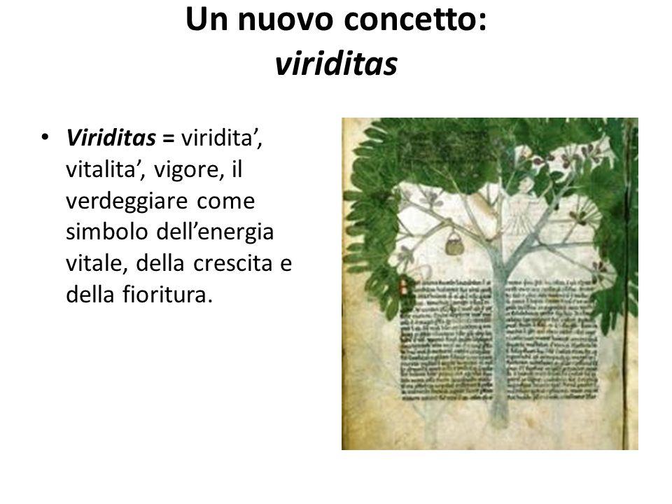 Un nuovo concetto: viriditas Viriditas = viridita', vitalita', vigore, il verdeggiare come simbolo dell'energia vitale, della crescita e della fioritu