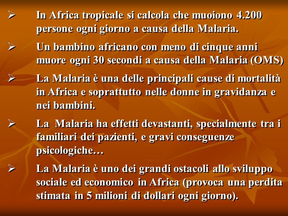  In Africa tropicale si calcola che muoiono 4.200 persone ogni giorno a causa della Malaria.  Un bambino africano con meno di cinque anni muore ogni