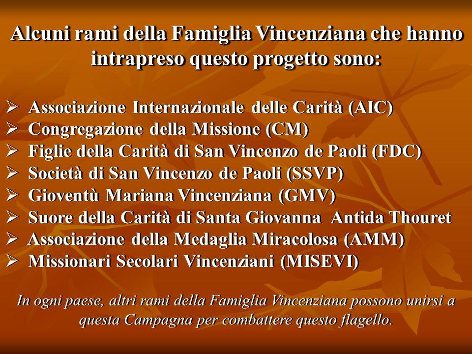 Alcuni rami della Famiglia Vincenziana che hanno intrapreso questo progetto sono:  Associazione Internazionale delle Carità (AIC)  Congregazione del