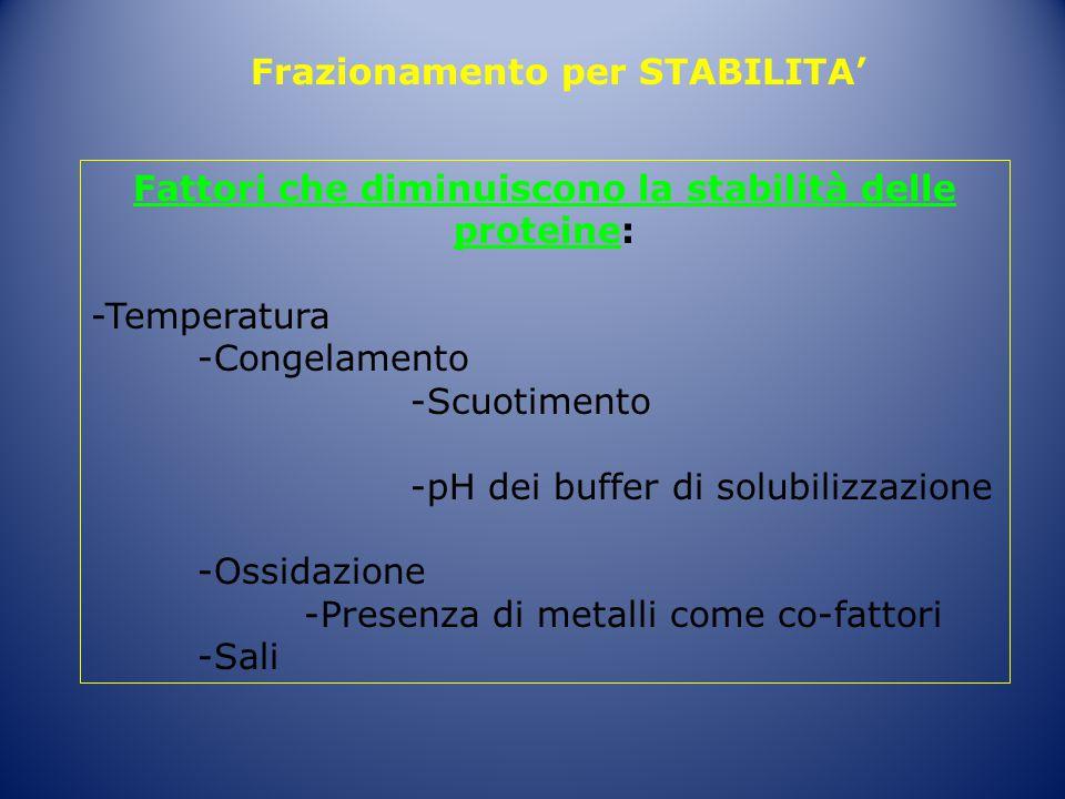 Fattori che diminuiscono la stabilità delle proteine: -Temperatura -Congelamento -Scuotimento -pH dei buffer di solubilizzazione -Ossidazione -Presenz