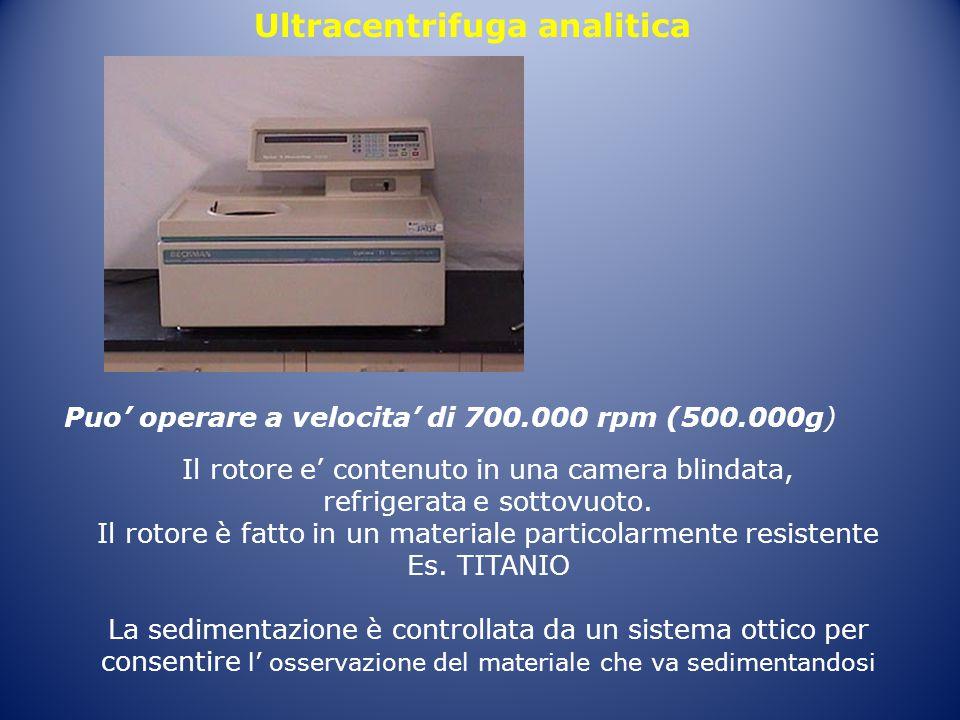 Ultracentrifuga analitica Puo' operare a velocita' di 700.000 rpm (500.000g) Il rotore e' contenuto in una camera blindata, refrigerata e sottovuoto.