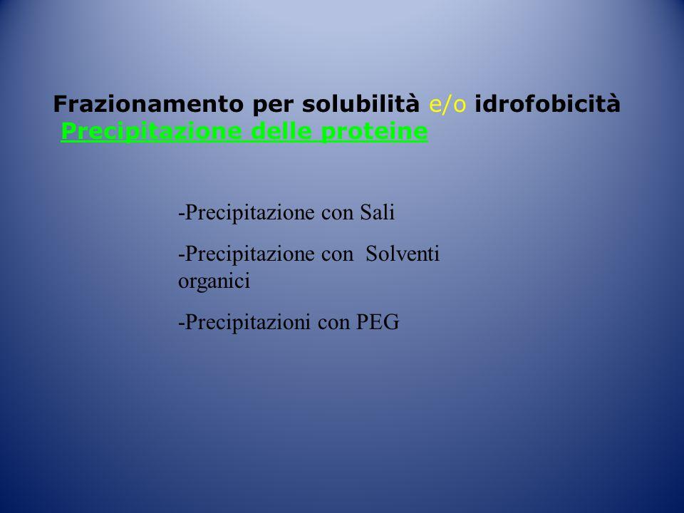 Frazionamento per solubilità e/o idrofobicità Precipitazione delle proteine -Precipitazione con Sali -Precipitazione con Solventi organici -Precipitaz