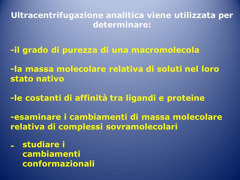 Ultracentrifugazione analitica viene utilizzata per determinare: -il grado di purezza di una macromolecola -la massa molecolare relativa di soluti nel