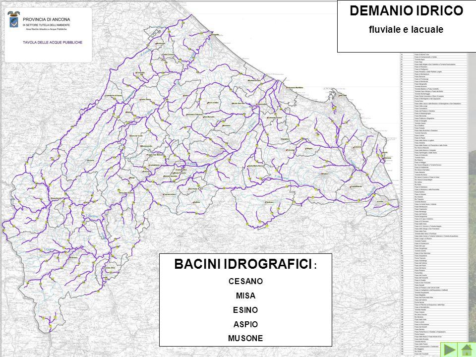 BACINI IDROGRAFICI : CESANO MISA ESINO ASPIO MUSONE DEMANIO IDRICO fluviale e lacuale
