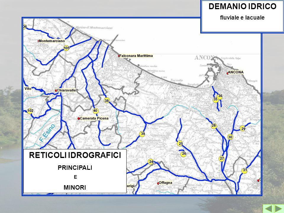 RETICOLI IDROGRAFICI PRINCIPALI E MINORI DEMANIO IDRICO fluviale e lacuale