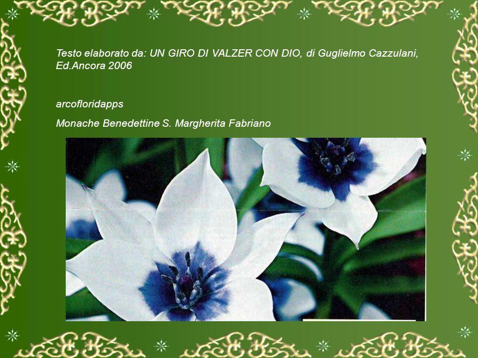 Testo elaborato da: UN GIRO DI VALZER CON DIO, di Guglielmo Cazzulani, Ed.Ancora 2006 arcofloridapps Monache Benedettine S.