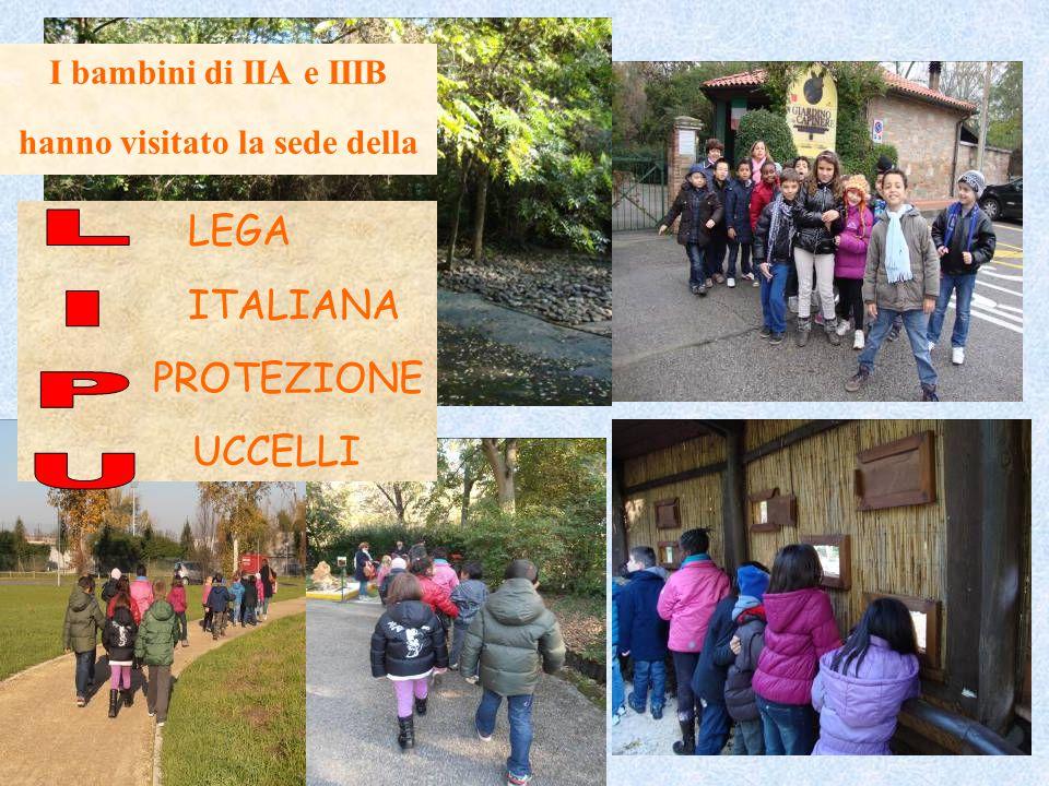 I bambini di IIA e IIIB hanno visitato la sede della LEGA ITALIANA PROTEZIONE UCCELLI