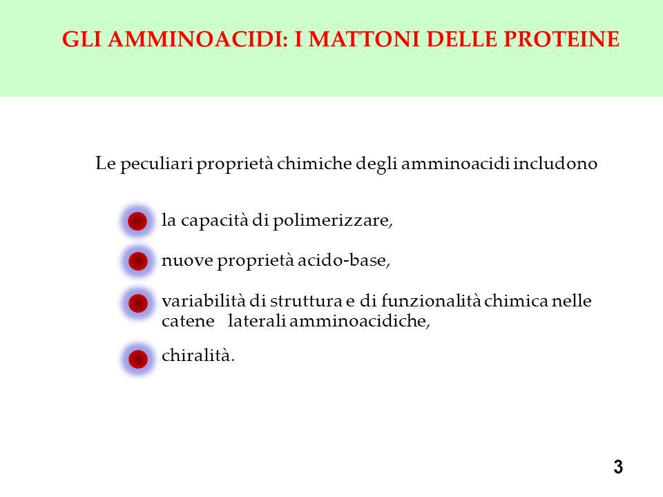 3 GLI AMMINOACIDI: I MATTONI DELLE PROTEINE Le peculiari proprietà chimiche degli amminoacidi includono la capacità di polimerizzare, nuove proprietà