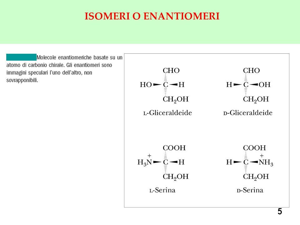5 ISOMERI O ENANTIOMERI