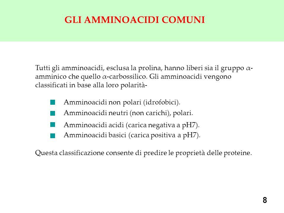 8 GLI AMMINOACIDI COMUNI Tutti gli amminoacidi, esclusa la prolina, hanno liberi sia il gruppo α- amminico che quello α-carbossilico. Gli amminoacidi