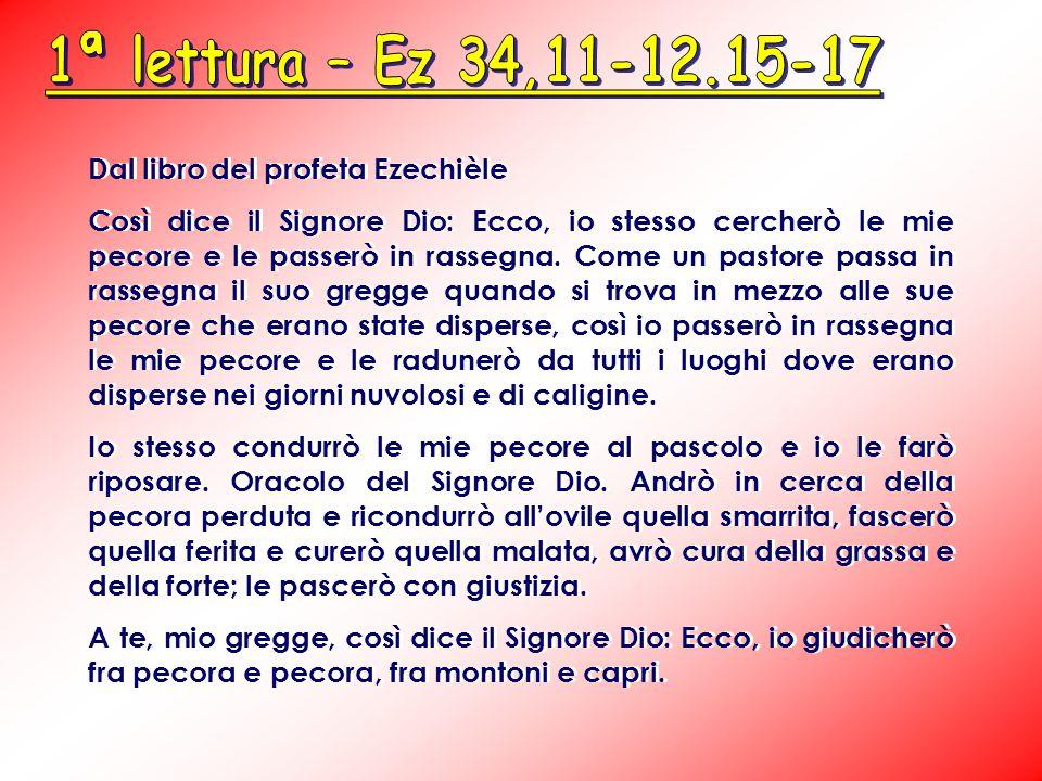 Dal libro del profeta Ezechièle Così dice il Signore Dio: Ecco, io stesso cercherò le mie pecore e le passerò in rassegna.