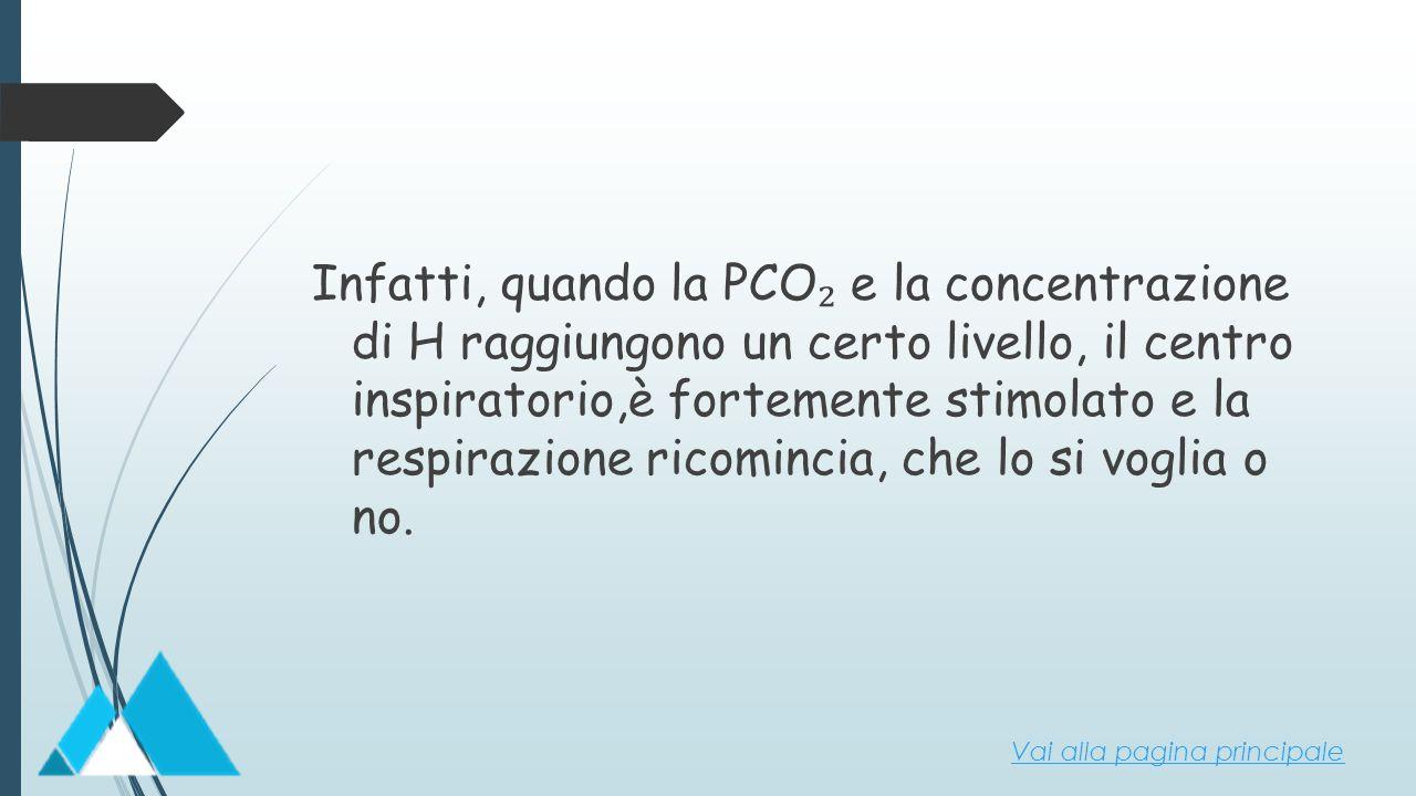 Infatti, quando la PCO ₂ e la concentrazione di H raggiungono un certo livello, il centro inspiratorio,è fortemente stimolato e la respirazione ricomi