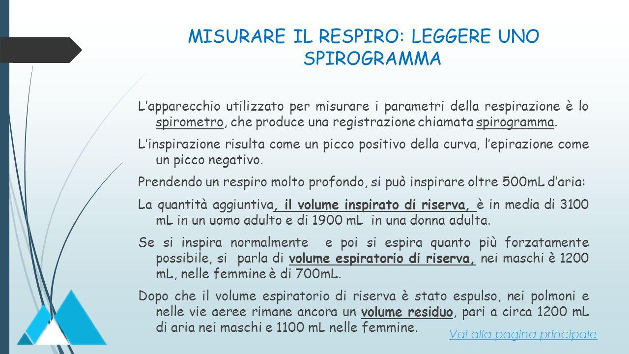 MISURARE IL RESPIRO: LEGGERE UNO SPIROGRAMMA L'apparecchio utilizzato per misurare i parametri della respirazione è lo spirometro, che produce una reg