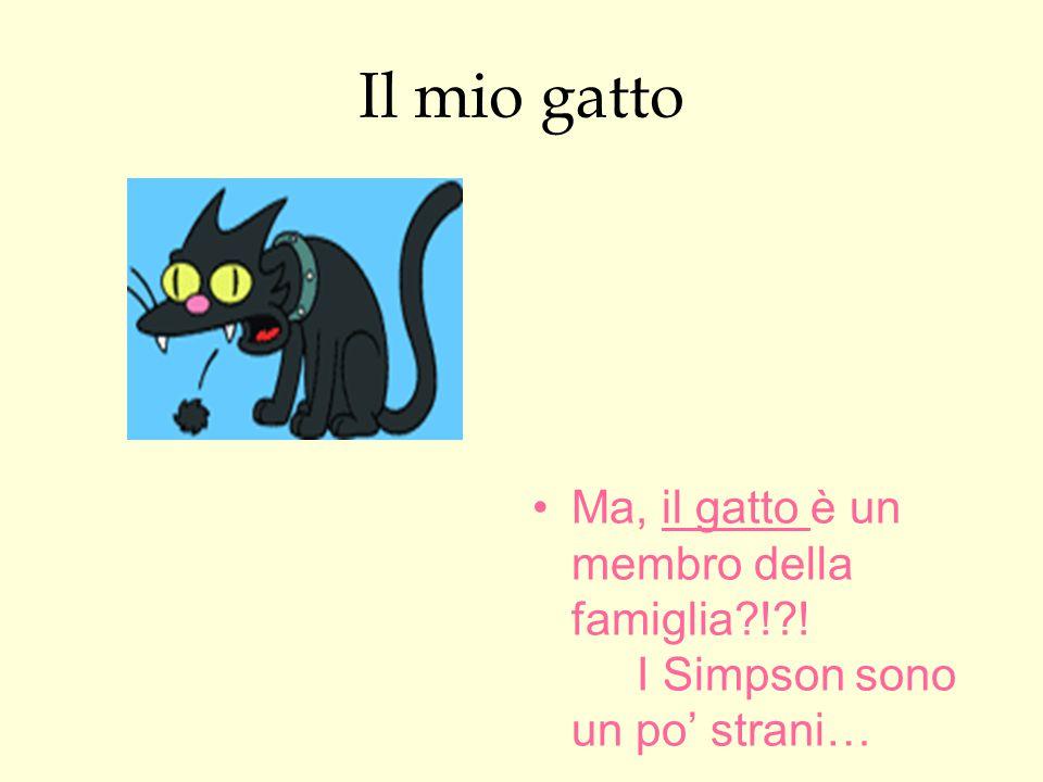 Il mio gatto Ma, il gatto è un membro della famiglia?!?! I Simpson sono un po' strani…
