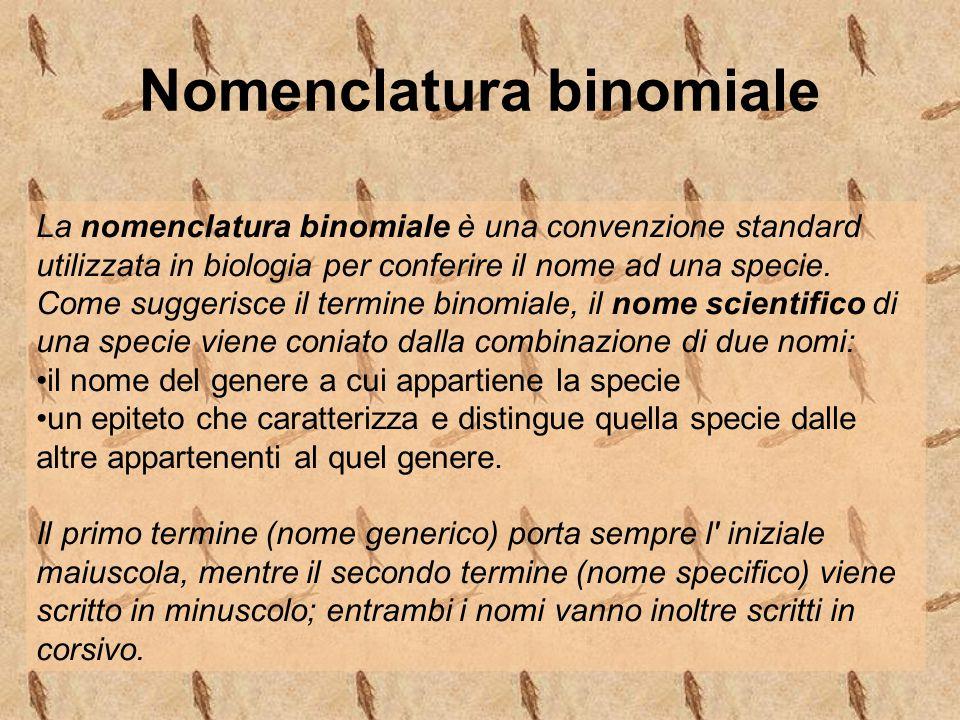 Nomenclatura binomiale La nomenclatura binomiale è una convenzione standard utilizzata in biologia per conferire il nome ad una specie. Come suggerisc