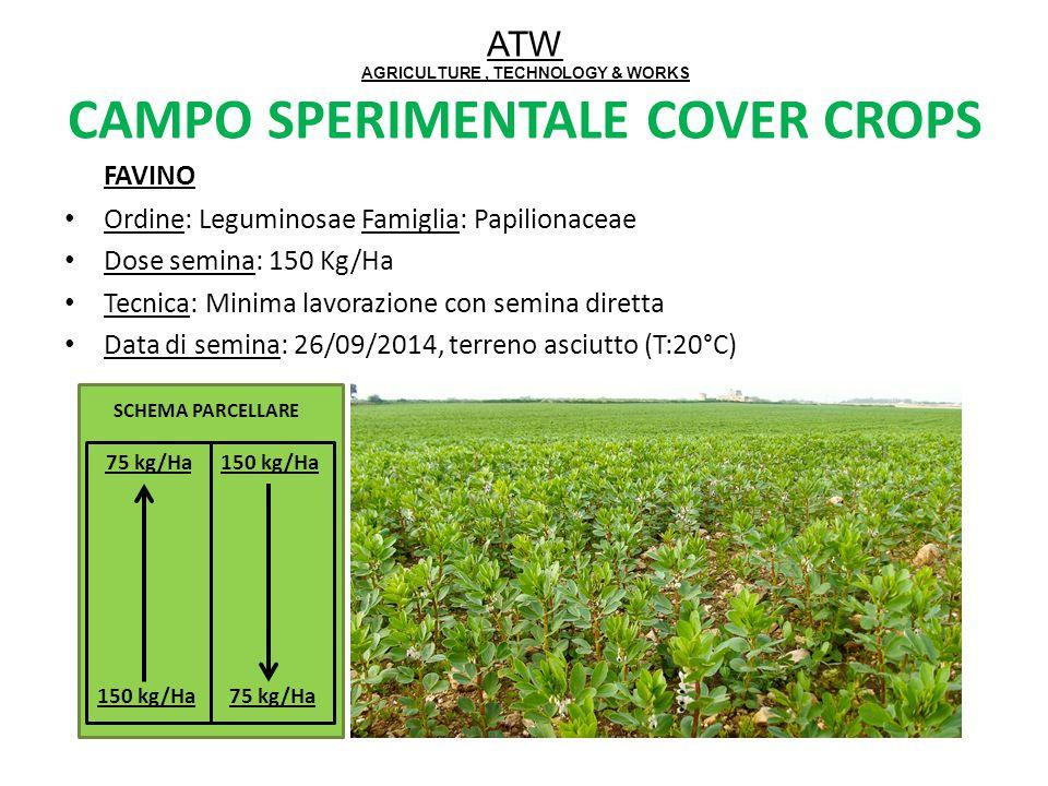ATW AGRICULTURE, TECHNOLOGY & WORKS CAMPO SPERIMENTALE COVER CROPS FAVINO Ordine: Leguminosae Famiglia: Papilionaceae Dose semina: 150 Kg/Ha Tecnica: